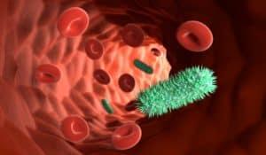 Rote Blutkörperchen und Bakterien Graphik